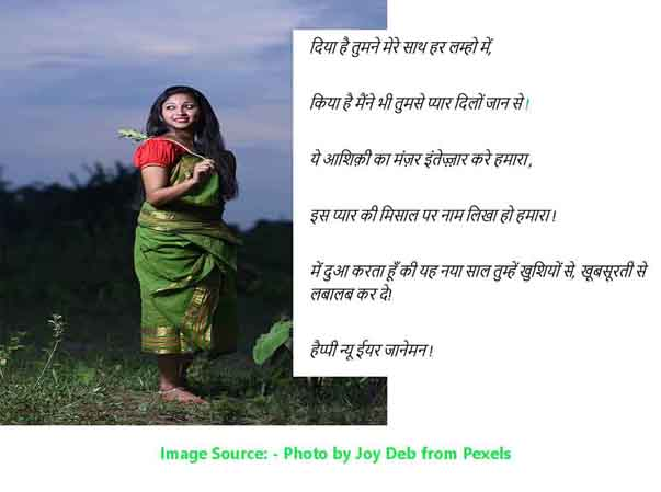 new year wishes for wife in Hindi