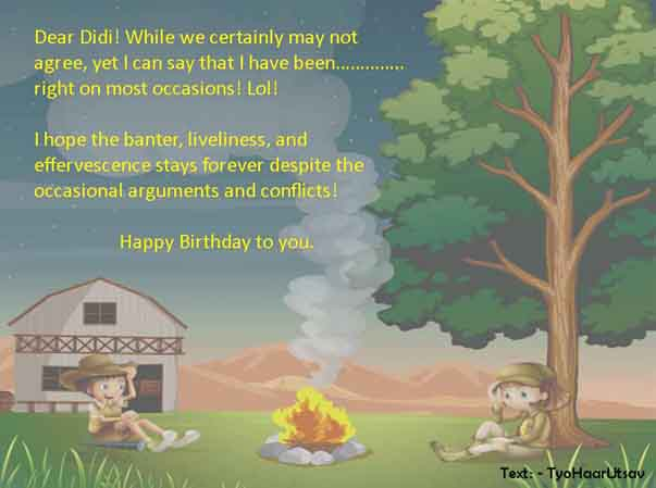 An Image of Humorous Sarcastic happy Birthday wish to Didi from Brother