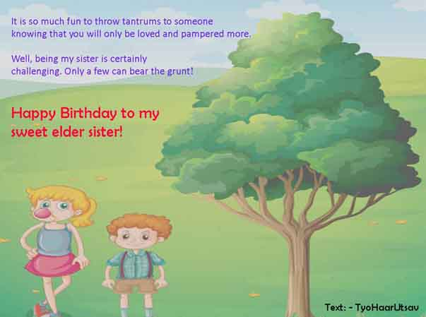 Funny Sarcastic Birthday Wish to Didi Image from Coolest Brother